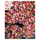 Des fleurs, toujours ♥️ Bon week-end !  Flowers, always ♥️ Have a nice weekend !  Beautiful picture via @signebay   #jojofactory