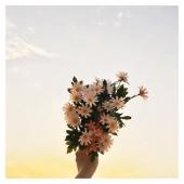 C o m m e  ç a . . . ✨  On en a besoin non ?   #jojomood #inspiration #mood via @pinterest #flowerpower #jojofactory